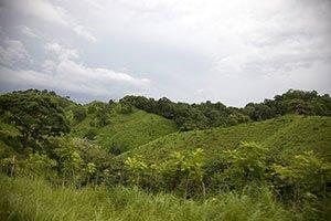 Panama Natur